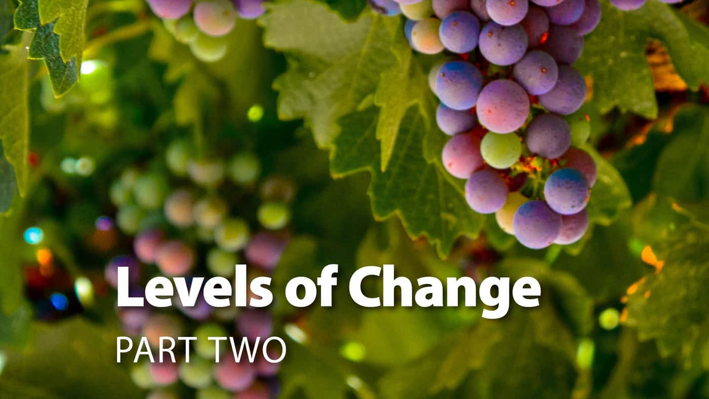 Session 6: Levels Of Change Part Two