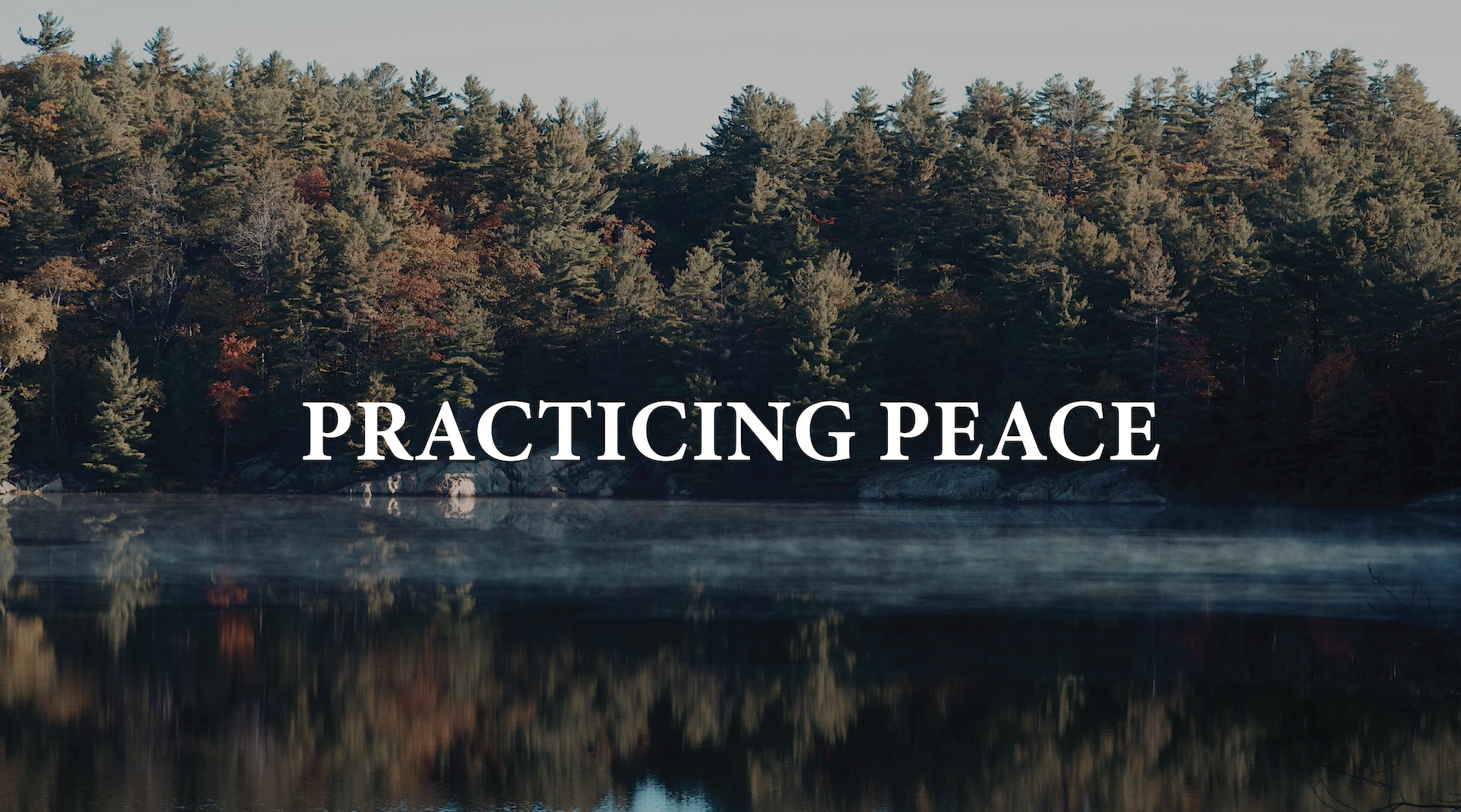 Practicing Peace Exercise